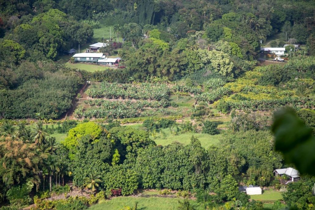 Farms Houses Wailua