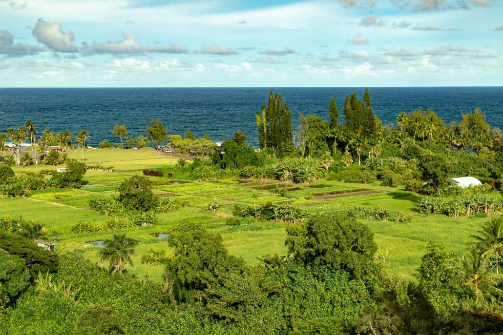 Keanae Peninsula Wide View Road to Hana Maui