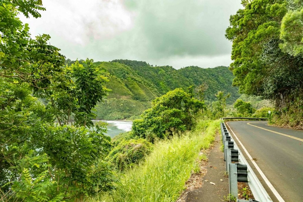 Road To Hana Cliff and Bay Road Maui