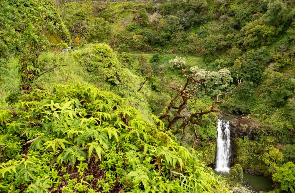 Road To Hana Gulch and Road Watefall Maui