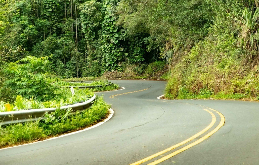 Road To Hana Twists and Turns Maui