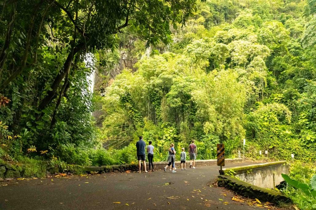 Road To Hana Wailua Watefall Visitors on Bridge Maui