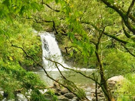 Road To Hana Watefall Hike Maui