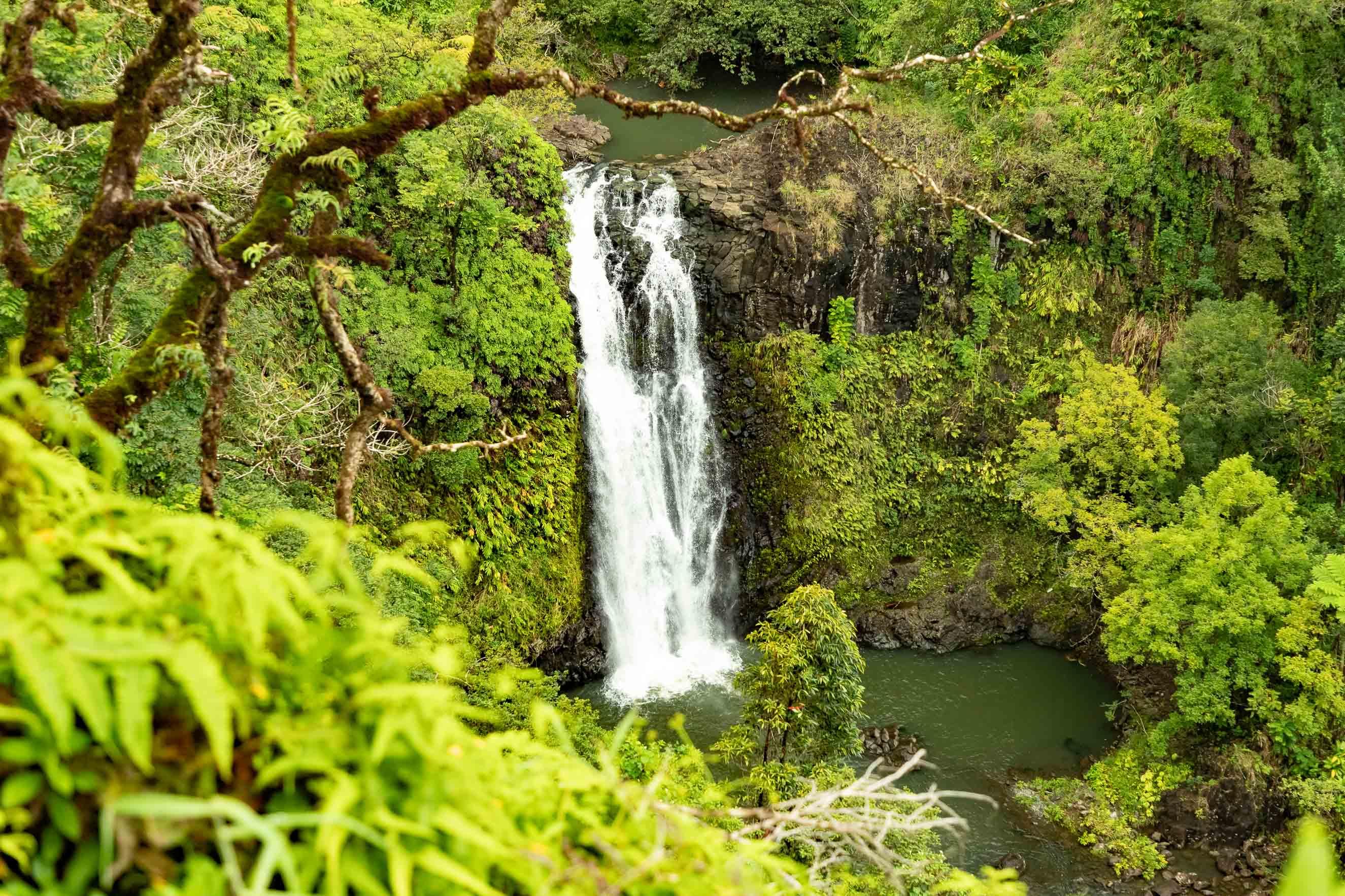 Road To Hana Watefall in Valley Maui