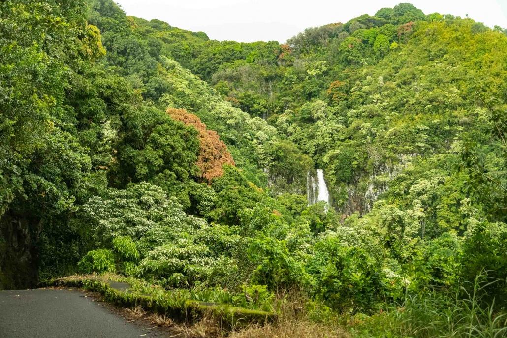 Road To Hana and Watefall Maui