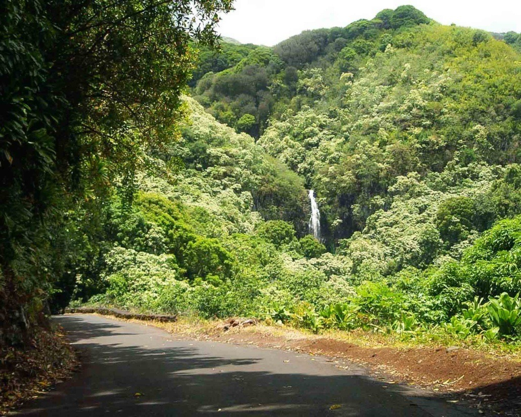 Hana Road With Waterfall in Distance Header