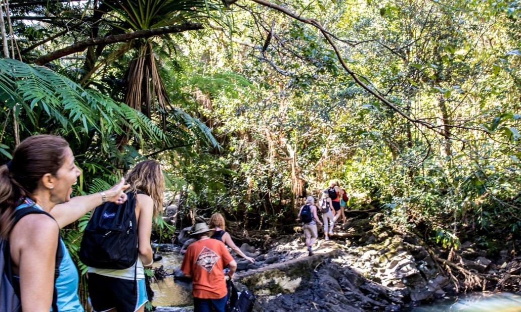 Hiking Hana Tour