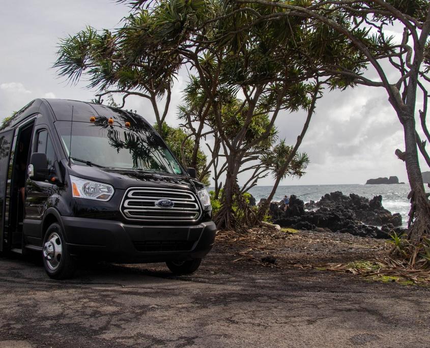 Hawaiian Style Mini Bus Low Profile