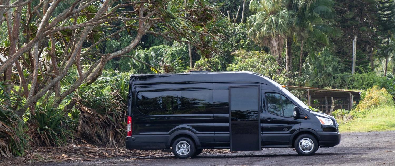 Hawaiian Style Mini Bus Under Tree