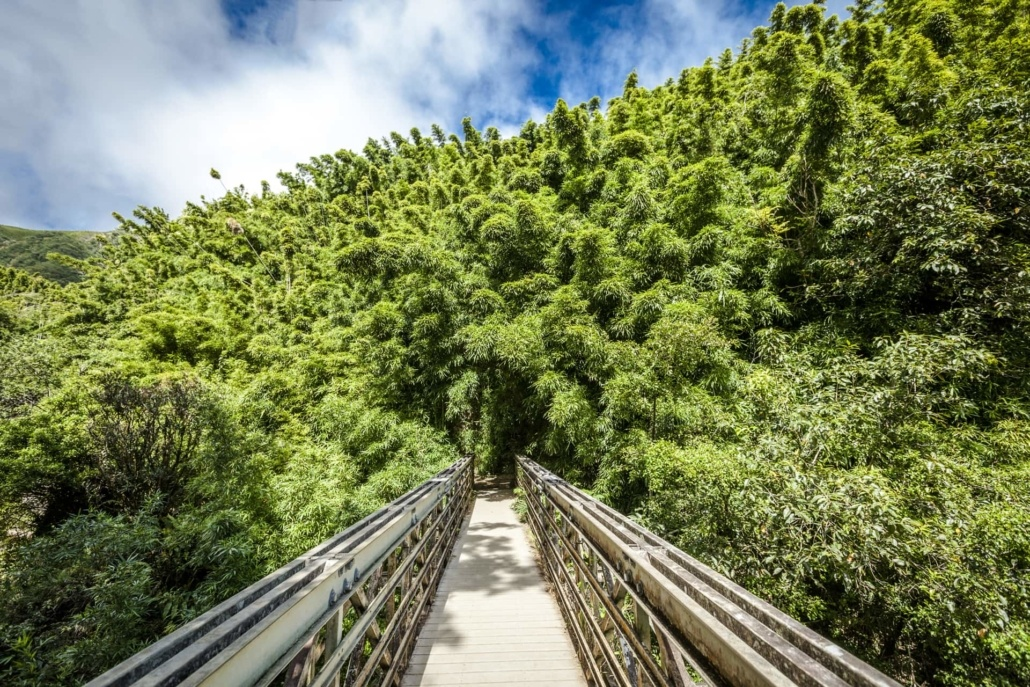Private Road To Hana Adventure