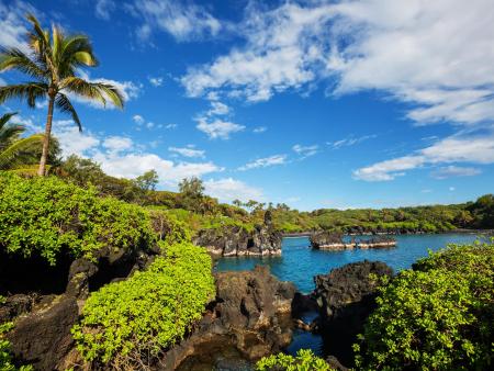 Holo Holo Maui Waianapanapa