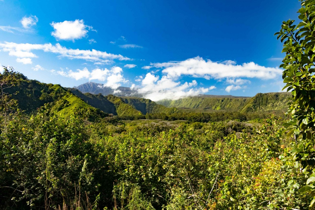 Located mauka (mountain side) of the ocean, this valley rises to the rim of Haleakala crater